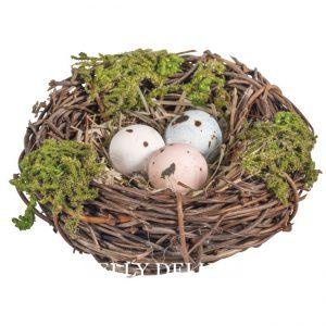 Kleines Vogelnest mit Eiern